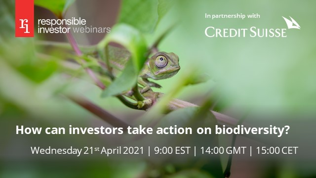 How can investors take action on biodiversity?