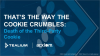 That's the Way the Cookie Crumbles: Death of the Third-Party Cookie