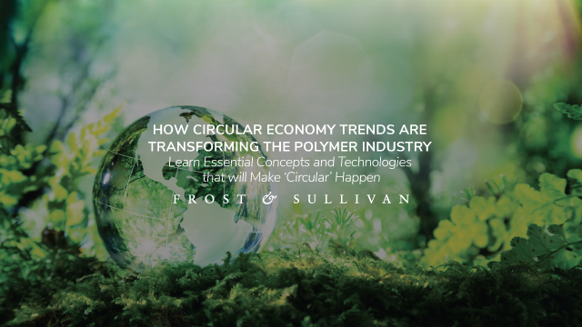 How Circular Economy Trends are Transforming the Polymer Industry