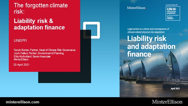 Climate Change Litigation and Liability Risks in Adaptation Activities & Finance