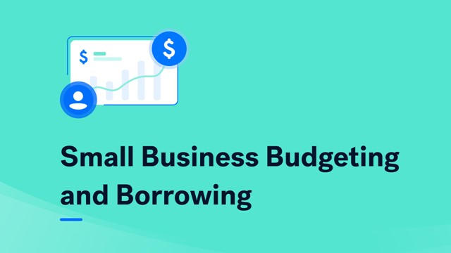 Small Business Budgeting and Borrowing