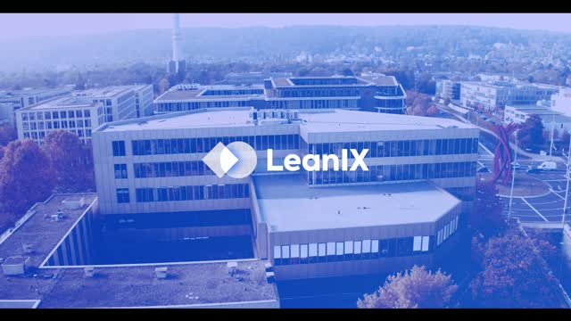 Who is LeanIX?