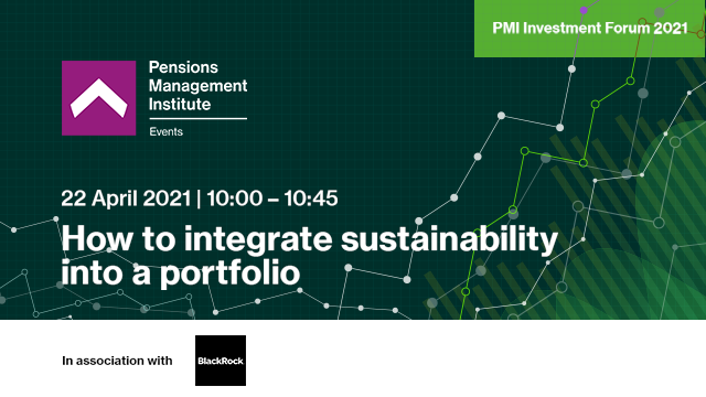 How to integrate sustainability into a portfolio