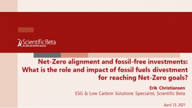 The role and impact of fossil fuels divestment for reaching Net-Zero goals