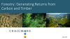 Forestry, Carbon and Climate Change: Investing for the Future
