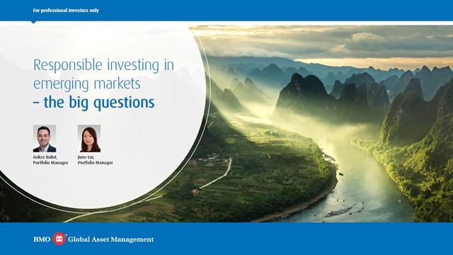 Responsible investing in emerging markets – the big questions