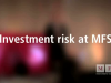Investment Risk at MFS