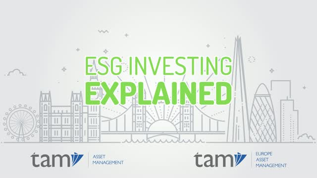 ESG Investing Explained - ESG as a Diversifier