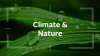 Joining the dots: investor action on climate and nature