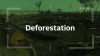 Deforestation as a systemic risk