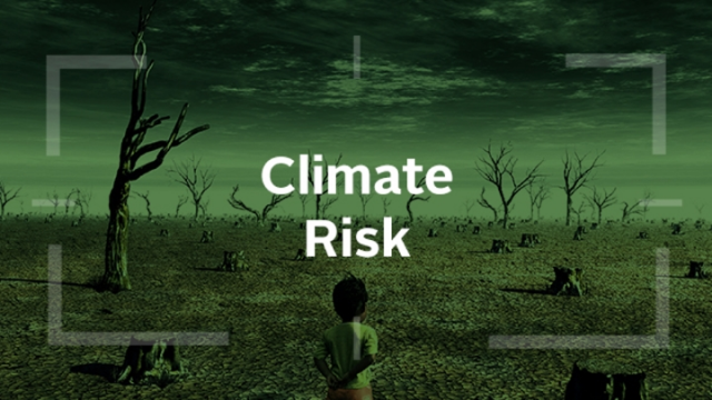 Accounting for Climate: assessing climate risk in company financial statements