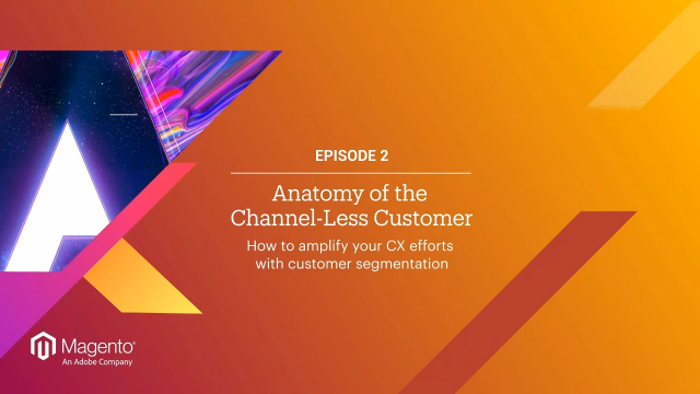 04 - The Anatomy of the Channel-less Customer