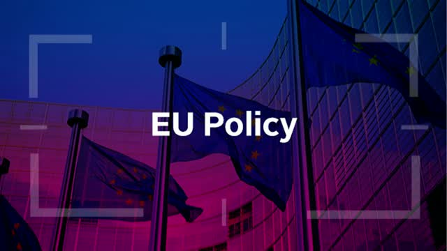 Mandatory human rights due diligence: EU policy developments and implications