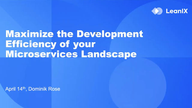 Maximize the Development Efficiency of your Microservices Landscape with LeaniX