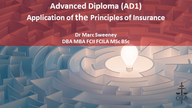 Introduction to Application of the Principles of Insurance (AD1)