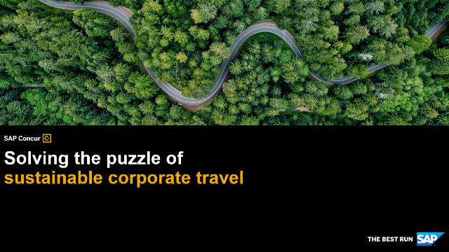 Solving the puzzle of sustainable corporate travel
