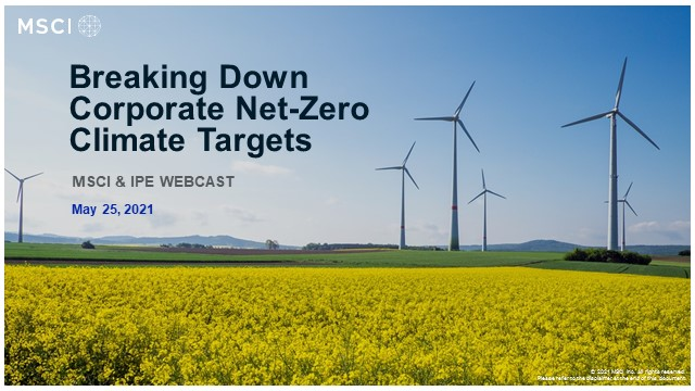 Breaking Down Corporate Net-Zero Climate Targets