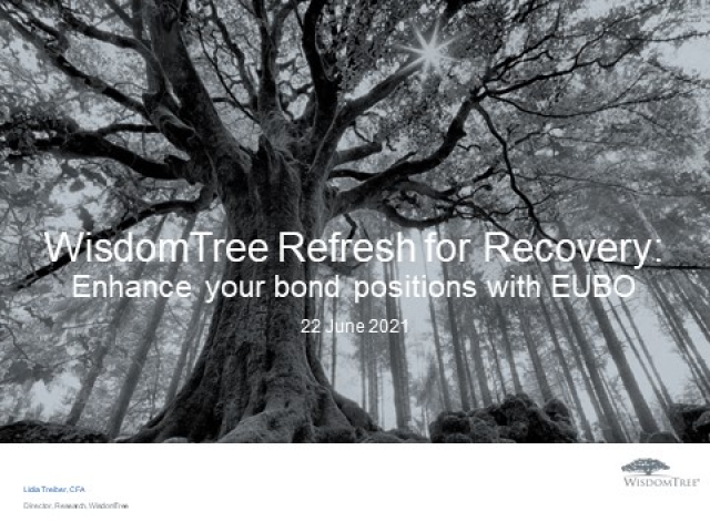 Refresh for Recovery Part 3: Enhance your fixed income position with euro bonds