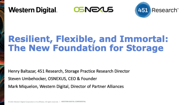 Resilient, Flexible, and Immortal: The New Foundation for Storage