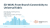 SD-WAN: From Branch Connectivity to Universal Fabric
