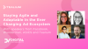 Staying Agile and Adaptable in the Ever Changing Ad Ecosystem