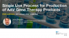 Single Use Process for Production of AAV Gene Therapy Products