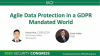 Agile Data Protection in a GDPR Mandated World