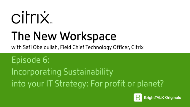 Incorporating Sustainability into your IT Strategy: For profit or planet?