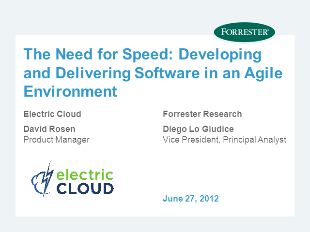 The Need for Speed: Developing and Delivering Software in an Agile Environment