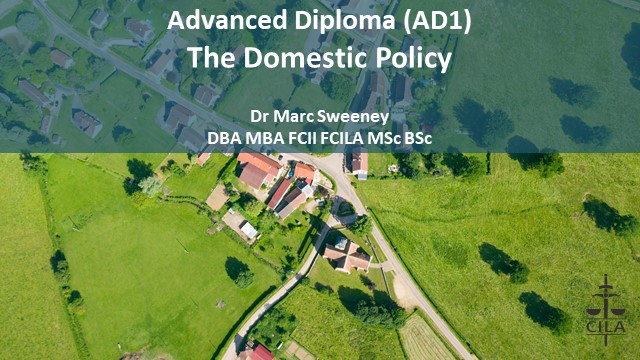 AD1 Tutorial 2 - The Domestic Policy