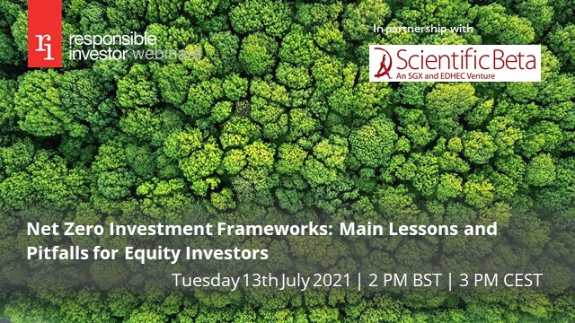 Net Zero Investment Frameworks: Main Lessons and Pitfalls for Equity Investors