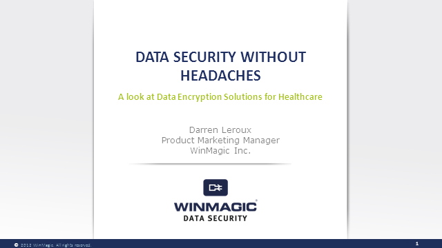 """Data Security Without the Headaches"""
