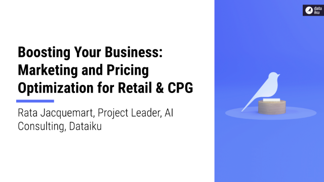 Boosting Your Business: Marketing and Pricing Optimization for Retail & CPG