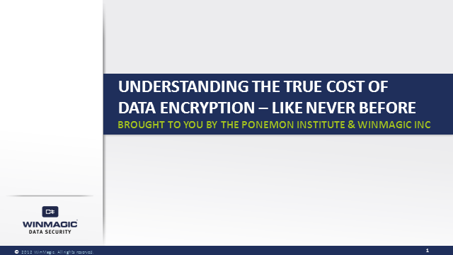 """Understanding the True Cost of Data Encryption - Like Never Before"""