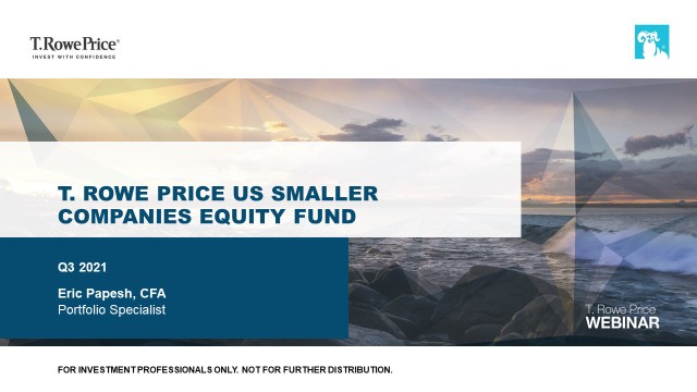Quarterly update - T. Rowe Price US Smaller Companies Equity Fund