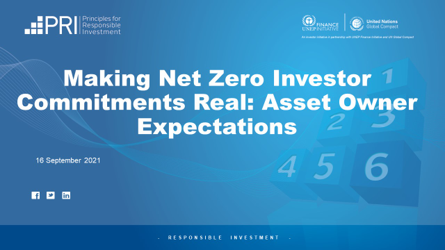 Making Net Zero Investor Commitments Real: Asset Owner Expectations