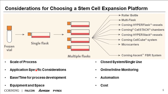 Challenges and Processes for Development and Scale-up of Stem Cell Therapies
