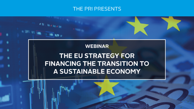 The EU Strategy for Financing the Transition to a Sustainable Economy