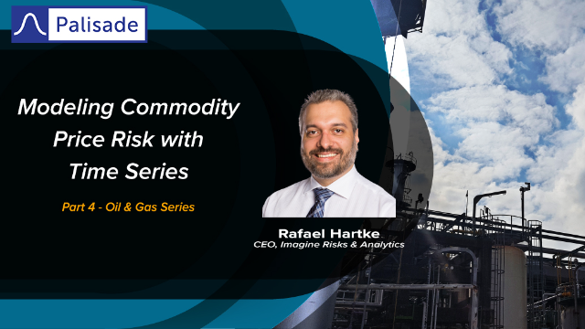 Modeling Commodity Price Risk with Time Series