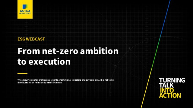 Turning Talk into Action: From Net-Zero Ambition to Execution