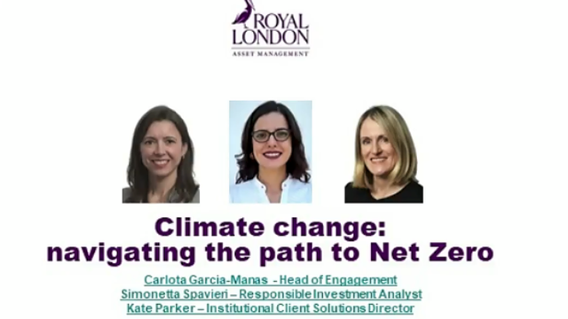 Climate change: navigating the path to Net Zero