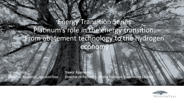 Energy Transition Part 2 Platinum: From abatement technology to hydrogen economy