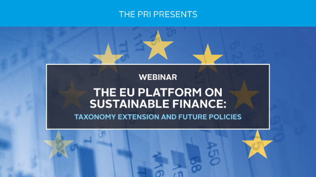 The EU Platform on Sustainable Finance: Taxonomy extension and future policies