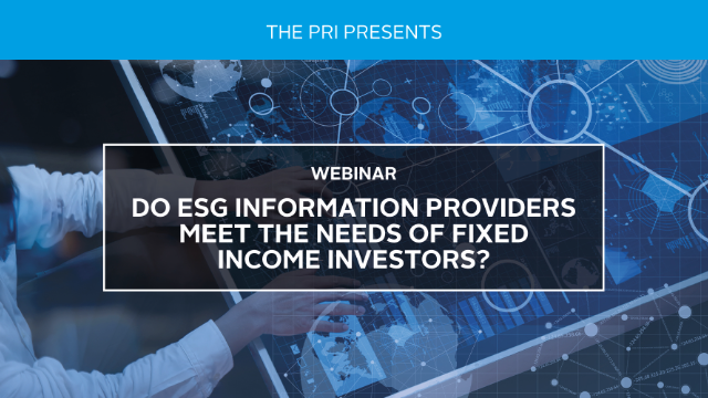 Do ESG Information Providers Meet the Needs of Fixed Income Investors?
