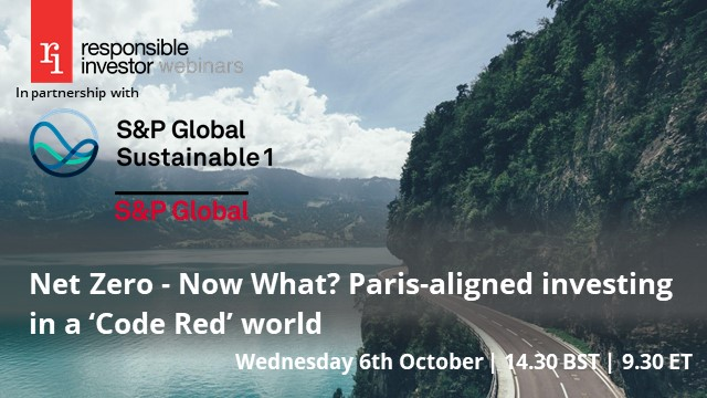 Net Zero - Now What? Paris-aligned investing in a 'Code Red' world