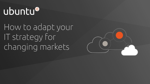 It's like a jungle out there: how to adapt your IT strategy for changing markets