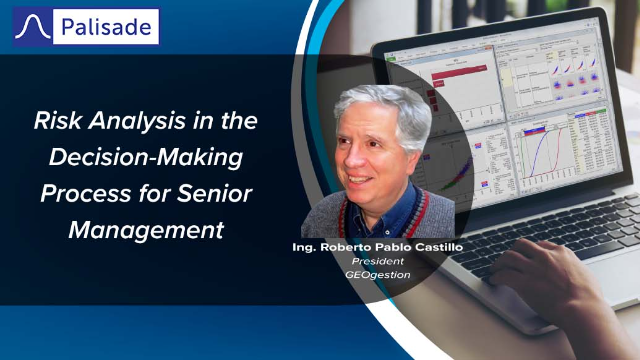 Risk Analysis in the Decision-Making Process for Senior Management