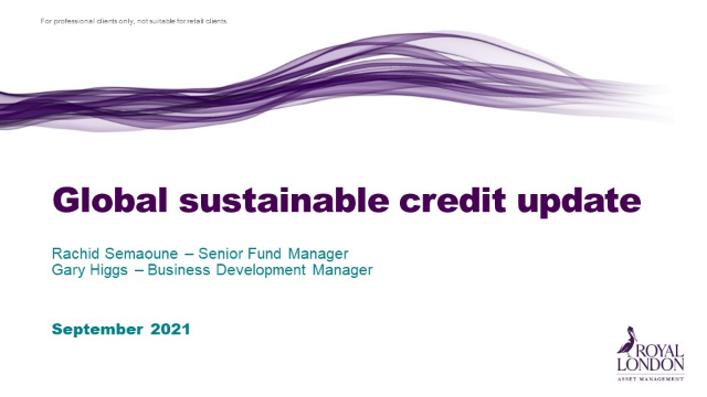 Global sustainable credit update
