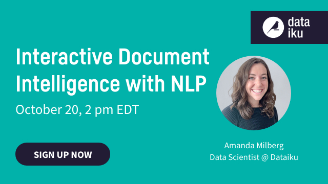 Interactive Document Intelligence With NLP
