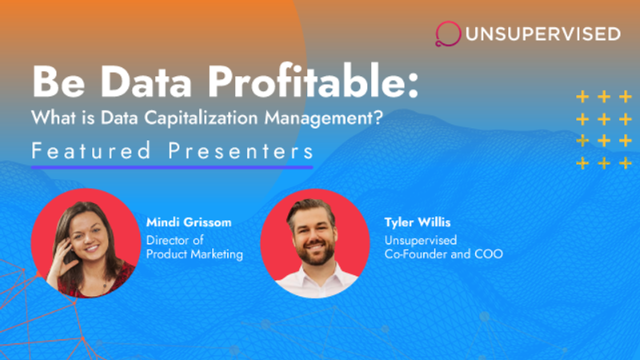 Be Data Profitable:  What is Data Capitalization Management?